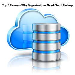 Top 6 Reasons Why Organizations Need Cloud Backup